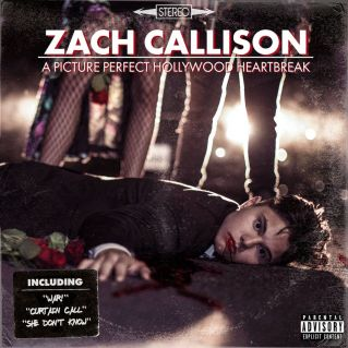 A A Picture Perfect Hollywood Heartbreak by Zach Callison
