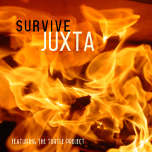 JUXTA CRASH BURN ARTWORK