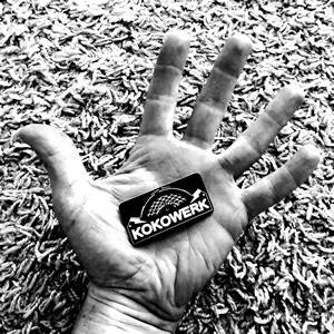 Kokowerk Album - BRASH! Magazine Blog
