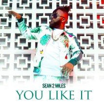 You Like It by Sean 2 Miles