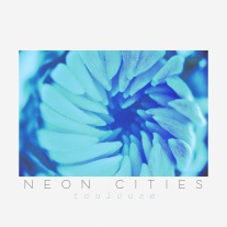 Toulouse by Neon Ctities