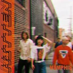 Kitten-Memphis